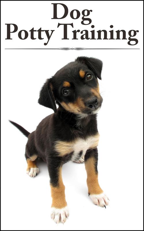 Dog Training Plr Videos
