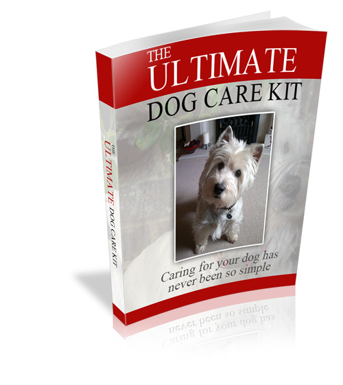Pay for Ultimate Dog Care kit MRR