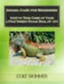 Thumbnail Iguana Care for Beginners