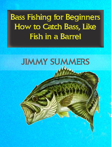 Bass fishing for beginners download sports for Fishing for beginners