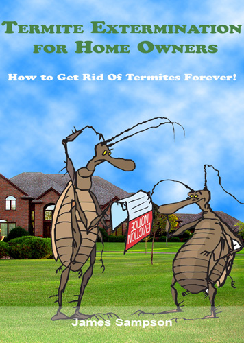 Pay for Termite Extermination Guide for Home Owners