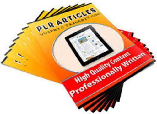 Pay for 2500 High Quality PLR Articles Pack