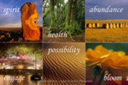 Thumbnail Spirit, Health, Abundance, Engage, Possibility, Bloom