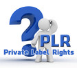Thumbnail EVERYTHING ABOUT PLR, MRR AND OTHER RESALE RIGHTS VOL 01.
