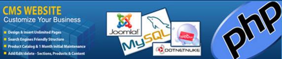 Thumbnail Website Development With CMS