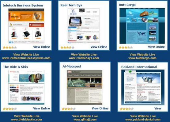 Pay for Cheapest Website Designing With Domain, Hosting & Designing