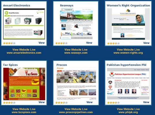 Pay for Website Package for SME Companies