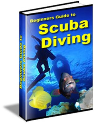 Pay for Beginners Guide To Scuba Diving