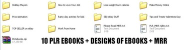 Thumbnail *new* 10 PLR ebooks with MRR