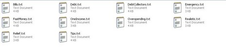 Thumbnail *new* Debts Articles with PLR
