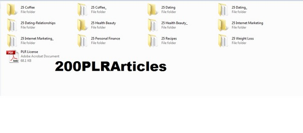 Pay for *must have*200 Niche Articles (NOV 2010) with PLR