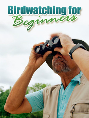 Pay for *must have*Bird Watching For Beginners with PLR