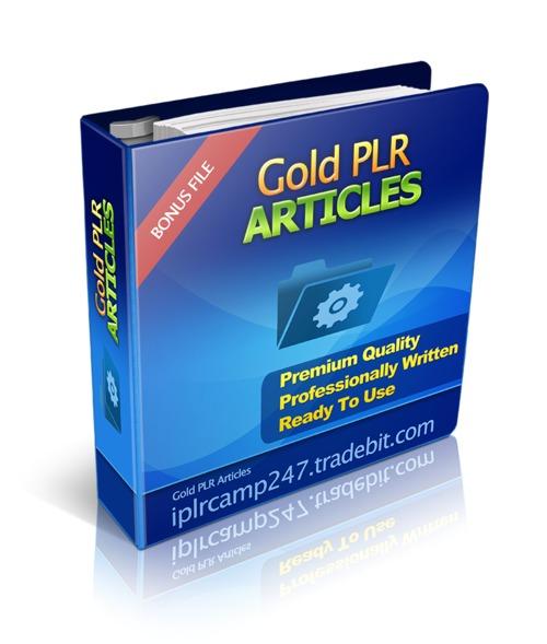 Pay for 20 Website Traffic Gold PLR Articles + BONUS (Ebook)