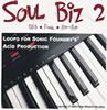 Thumbnail R&B Loops 2