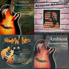Thumbnail Acoustic Guitar Loops Pack #1