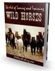 Thumbnail New The Art of Taming and Training Wild Horses (PLR) (HOT)