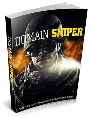 Pay for Domain Sniper eBooks with PLR (MUST GET)
