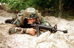 Thumbnail US Marine Corps Technical Manual Rifle, 5.56 mm, M16 Book