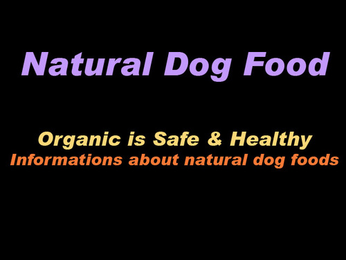 Pay for Natural Dog Foods