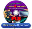 Thumbnail PLR For Newbies Videos - learn all about PLR