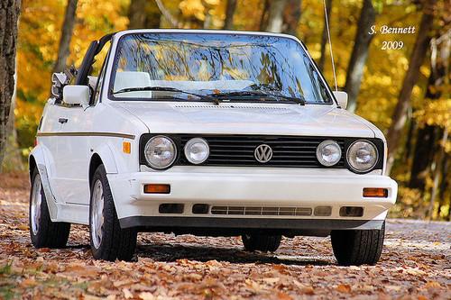 Pay for Volkswagen CABRIOLET SCIROCCO Service Manual 1985-1993