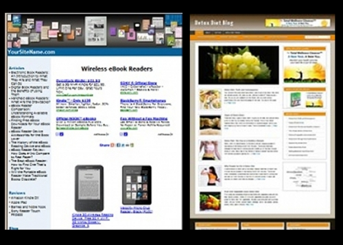 Pay for 2 Website Themes- Natural Detox and ereader Website Themes