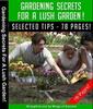 Thumbnail Gardening Secrets For A Lush Garden