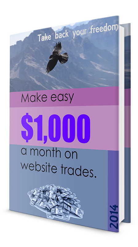 Pay for Make easy $1,000 a month on website trades. MRR