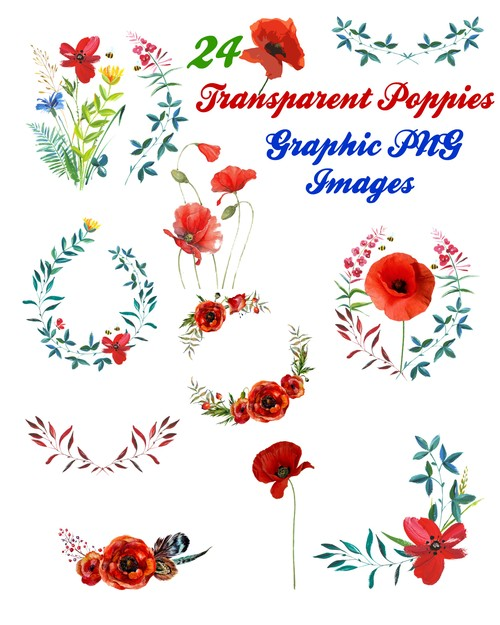 Pay for 24 Poppy Flowers and Branches Clip Art Transparent PNG Files