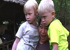 Thumbnail Albino Angels