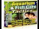 Thumbnail Aquarium FishCareTactics PLR