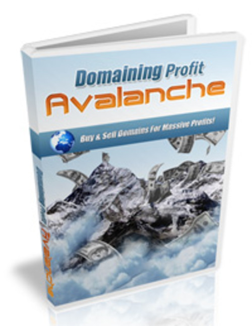 Pay for Domaining Profits Avalanche- Home Study Course