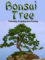Thumbnail Bonsai Tree Trimming, Sculpting and Pruning MRR