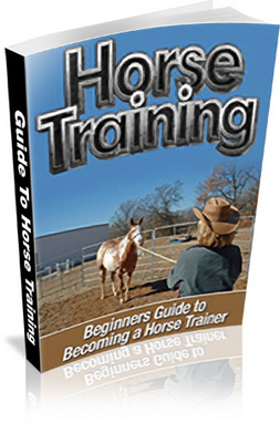 Pay for Beginners Guide To Horse Training Includes MRR