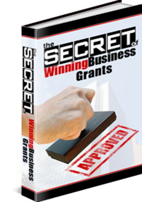 Pay for The Secret Of Winning Business Grants MRR