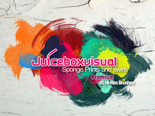 Pay for PREMIUM HI- RES Sponge Prints and Swirls Brush set