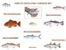 Thumbnail 7 How To Catch Fish Ebooks