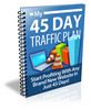 Thumbnail 45 Day Traffic Plan
