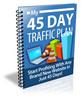 Thumbnail 45 Day Traffic Plan