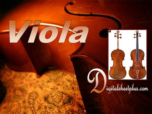 Pay for Viola Studies Methods and Collections