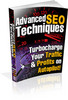 Thumbnail Advanced S.E.O. Techniques