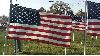 Thumbnail US Flag 2