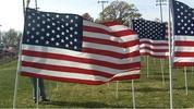 Thumbnail US Flag 3