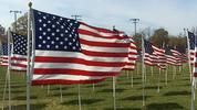 Thumbnail US Flag 8