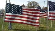 Thumbnail US Flag 9