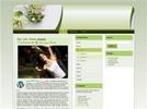 Thumbnail Wordpress Theme Blowout V2