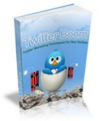 Pay for Twitter Boom