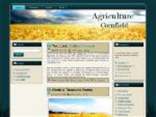 Pay for Cornfield Wordpress Theme