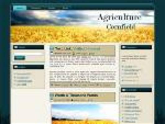 Pay for Cornfield Wordpress Theme