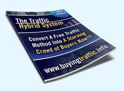 Thumbnail The Traffic Hybrid System